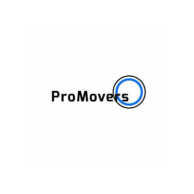 Pro Movers Miami LOGO 800x800 JPEG.jpg